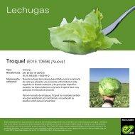 Leaflet Troquel 2021