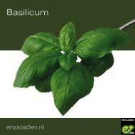 Basilicum 2021