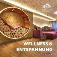Hotel der Bäume - Fritz Asbach