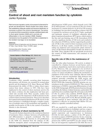 Control of shoot and root meristem function by cytokinin