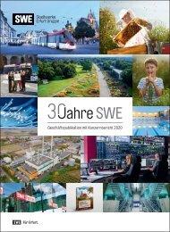 SWE Geschäftspublikation 2020
