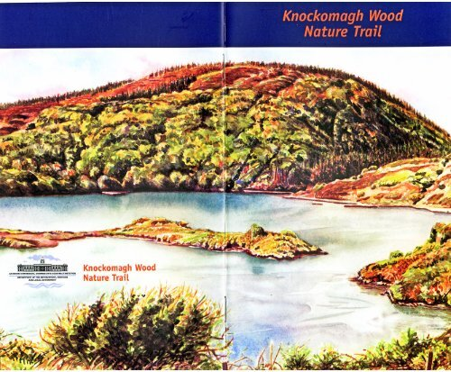Lough Hyne Knockomagh Wood Nature Trail - Skibbereen Heritage ...