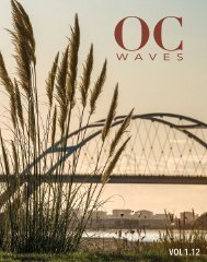 Oregon Coast Waves - 1.12