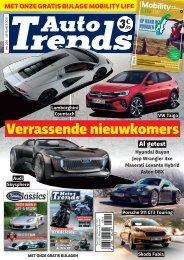 AUTO TRENDS_301_NL_BR
