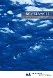 ROV SERVICES - Momentum Engineering