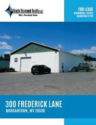 300_Frederick_Lane_Marketing_Flyer