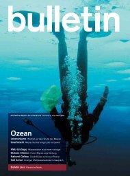 bull_08_03_Ozean