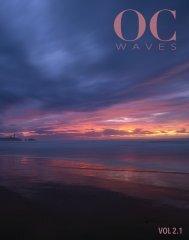Oregon Coast Waves - 2.1