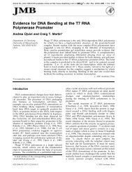 Evidence for DNA Bending at the T7 RNA Polymerase Promoter