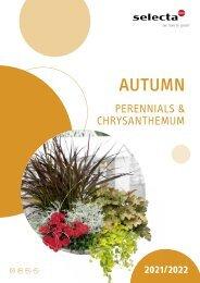 selecta Autumn NE Gesamt