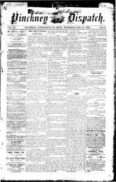 12-21-1893 - Village of Pinckney