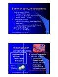 NW-Tag Jahrgang 9 Biologie Fachvortrag Biologie Nr. 2 Infektions ... - Seite 5