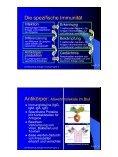 NW-Tag Jahrgang 9 Biologie Fachvortrag Biologie Nr. 2 Infektions ... - Seite 7