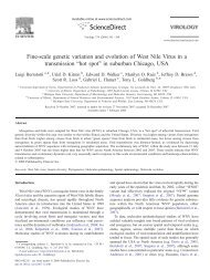 Fine-scale genetic variation and evolution of West Nile Virus in a ...