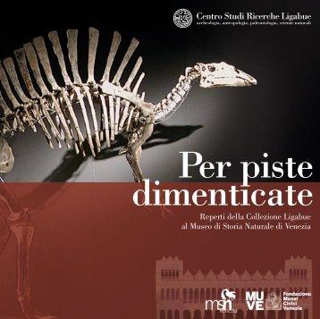 Reperti della Collezione Ligabue al Museo di Storia Naturale di ...