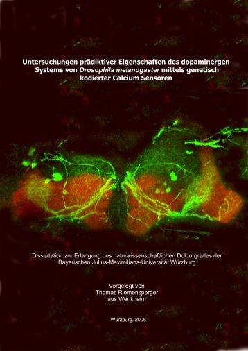 Untersuchungen prädiktiver Eigenschaften des dopaminergen ...