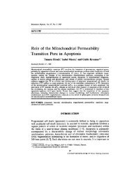 Role of the Mitochondrial Permeability Transition Pore in Apoptosis
