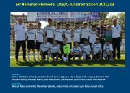 SV Hammerschmiede - jfgwittelsbacherland.de