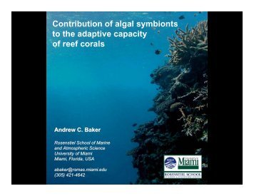 Contribution of algal symbionts to the adaptive capacity of reef corals