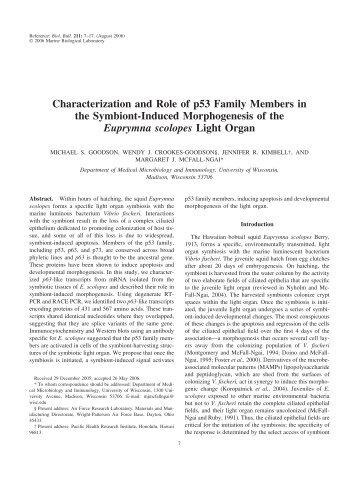 Characterization and Role of p53 Family Members in the Symbiont ...