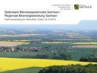 Datenbank Biomassepotenziale Sachsen / Regionale ...