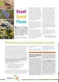 Magazin zur Landesgartenschau - Landesgartenschau Bamberg - Seite 6