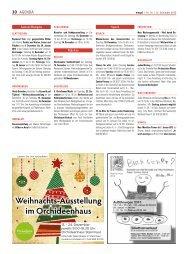 Weihnachts-Ausstellung im Orchideenhaus - Wospi