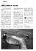 Blau - Der Gallispitz - Seite 7