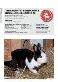 hallo - Tierheim Recklinghausen - Seite 2