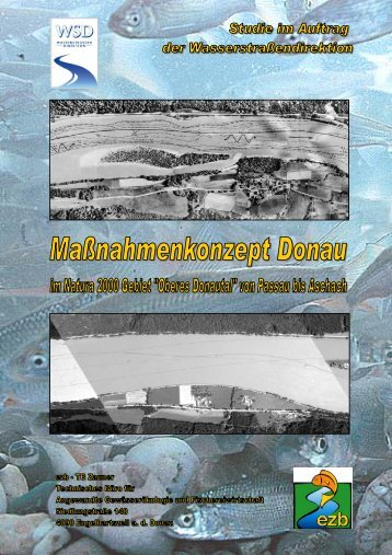"Maßnahmenkonzept Donau im Natura 2000 Gebiet ""Oberes Donautal"""