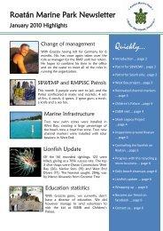 Water Taxis Meeting Henry Morgan - Roatan Diving Vacations