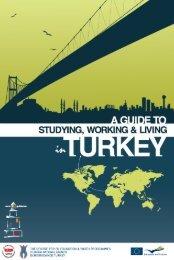 Turkey exports hazelnut to 95 countries... - Türkiye İş Kurumu