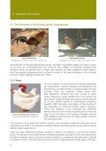 Poultry in the United Kingdom - Defra - Page 7