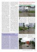 Bienenschwärme in Alkoven - Freiwillige Feuerwehr Alkoven - Page 3