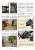 Bienenschwärme in Alkoven - Freiwillige Feuerwehr Alkoven - Page 4