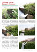 Bienenschwärme in Alkoven - Freiwillige Feuerwehr Alkoven - Page 5
