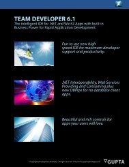 Team Developer 6.1 Datasheet - Gupta Technologies