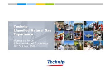 Technip Liquefied Natural Gas Experience