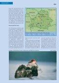 Unbekanntes Weißrussland: Wasservögel und Karpfen - Der Falke - Seite 3