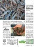 Fischerei ging leicht zurück, Aquakultur mit neuem Rekord - Seite 4