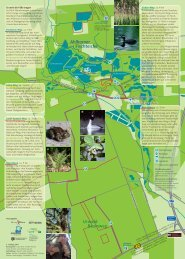 Naturerlebnis Ahlhorner Fischteiche und Urwald Baumweg