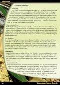 PDF-Download - Pasta Nuova - Seite 4