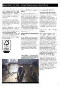 Fussbodenpreisliste 2011 - Basislager 8 - Seite 5