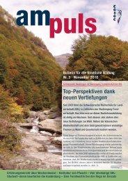 Bulletin für die forstliche Bildung Nr. 3.November 2010 am ... - Codoc