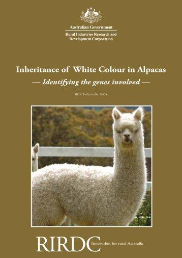 Inheritance of White Colour in Alpacas - Australian Alpaca Association