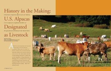Livestock - Jornada Alpacas