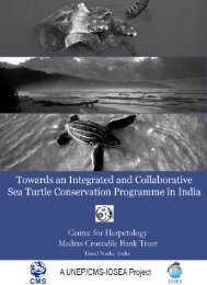 Chapter 4 The status of sea turtle populations in the Andaman and ...