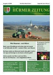Ausgabe 01/2008 (2,38 MB) - Marktgemeinde Hürm