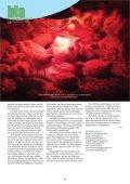 Küchenkalender 2013 ist da - Verein SozialÖkologie e.V. - Page 4