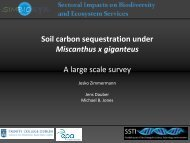 Soil carbon sequestration under Miscanthus x giganteus A large ...